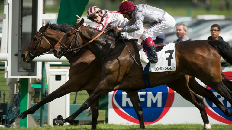 Longchamp duel: Cirrus Des Aigles beats Treve in the 2014 Prix Ganay