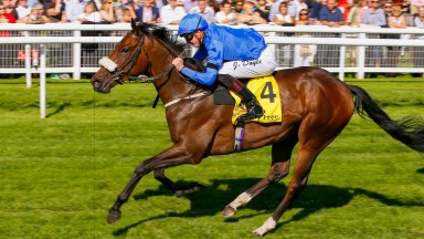 Could Ribchester help you to win a VIP trip to the 2018 Dubai World Cup?