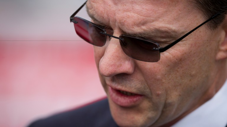 Aidan O'Brien: has the favourite or second favourite in five of the Breeders' Cup races