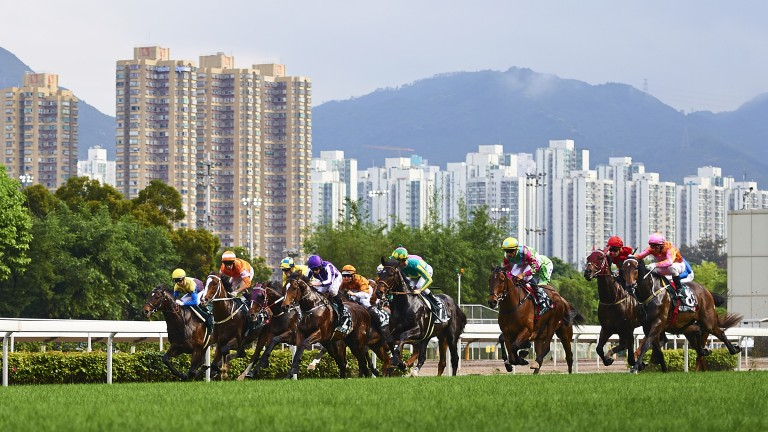 The Stewards' Cup is the feature on the Chinese New Year card at Sha Tin