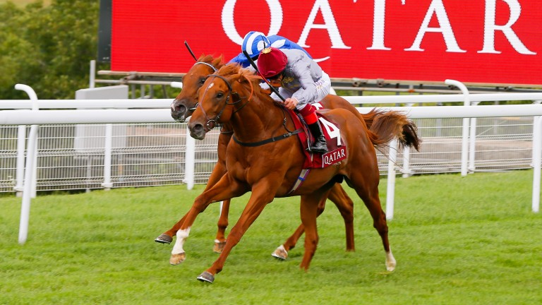 Subsequent 2,000 Guineas winner Galileo Gold took the Vintage Stakes for Al Shaqab Racing in 2015