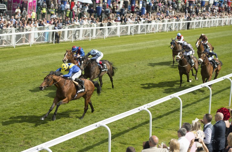 Cannock Chase: trained by Sir Michael Stoute to win five races