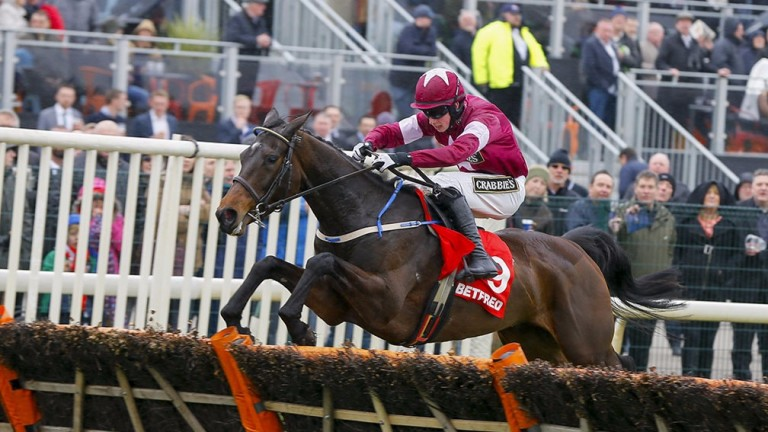 Apple's Jade: finished second behind Rashaan in the WKD Hurdle at Down Royal