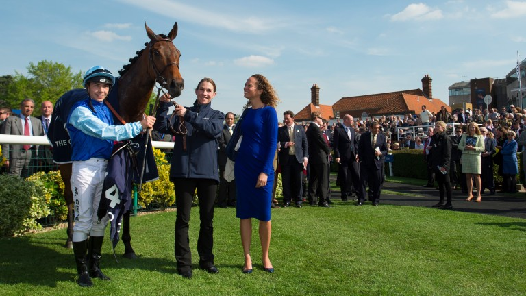 Miss France S First Foal By Galileo Set To Be Unleashed By