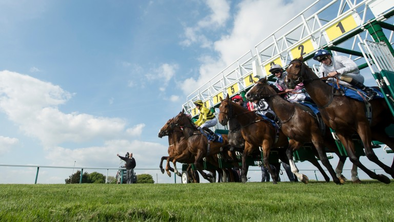 Optimism is building that racing could resume next month