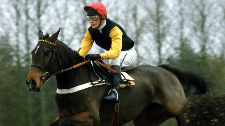 Remittance Man: 1992 Champion Chase winner was a worrier