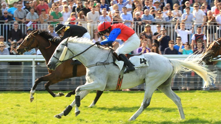 Thousand Stars and Katie Walsh get the better of Le Grand Luce in the 2014 Prix la Barka