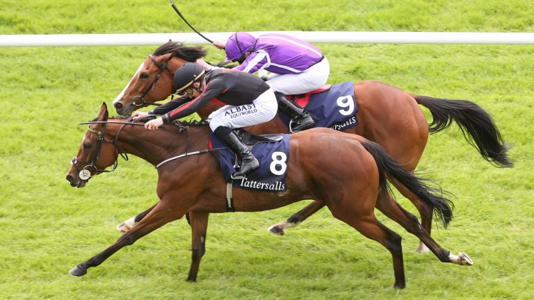 Jet Setting: Biggest victory came in the 2016 Irish 1,000 Guineas