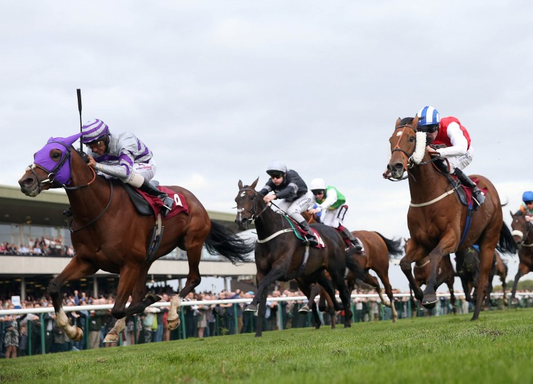 Nakeeta (left) was second in last year's Chester Cup