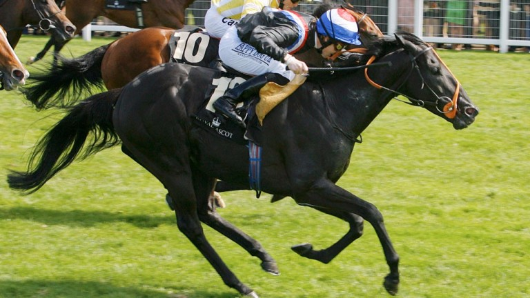 Society Rock winning the 2011 Golden Jubilee Stakes at Royal Ascot
