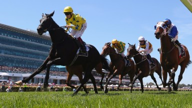 Side Glance won the 2013 renewal of the Mackinnon Stakes at Flemington