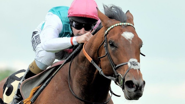 Frankel: his daughter Touch Of Paradise set to be his first three-year-old runner