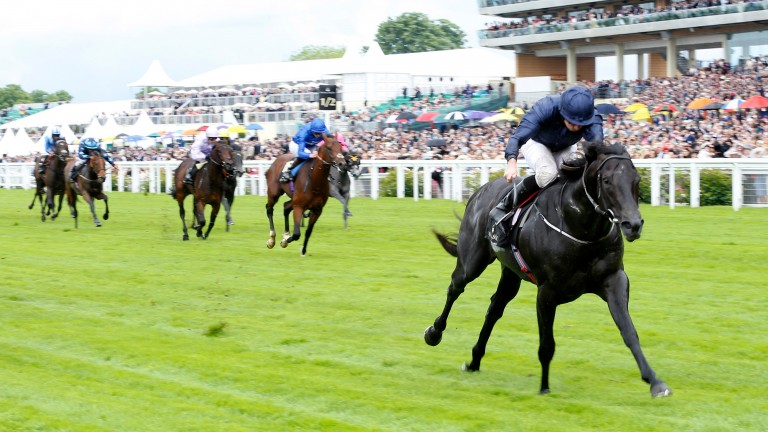 Caravaggio will have his work cut out to beat Fas