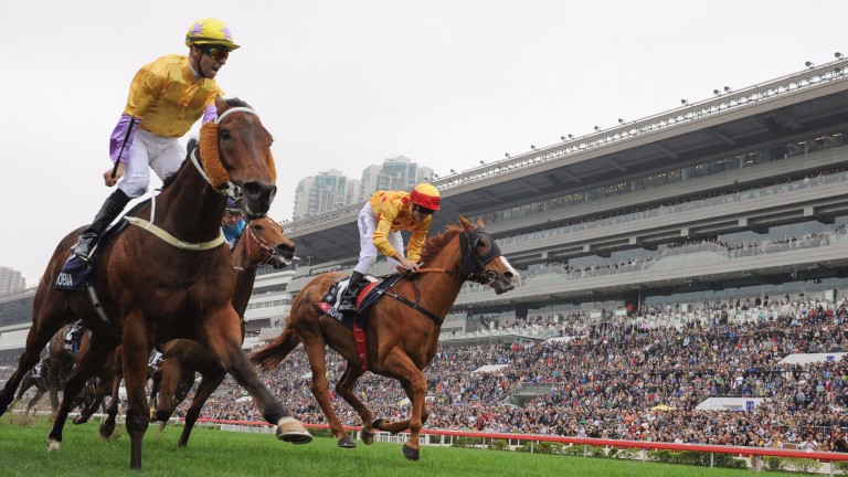 Peniaphobia (left), winning last year's Hong Kong Sprint, defends his title