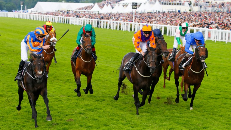 Sword Fighter (left) beats subsequent St Leger winner Harbour Law (orange sleeves and cap) in the Queen's Vase in 2016