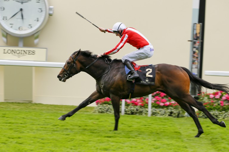Over to you sis - Ardad wins at Royal Ascot in 2016