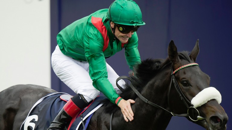 Harzand: joins his sire Sea The Stars at Gilltown Stud