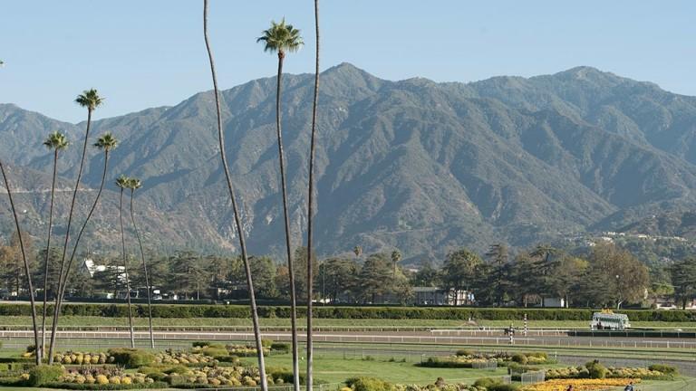 Santa Anita: home of Saturday's Breeders' Cup bonanza