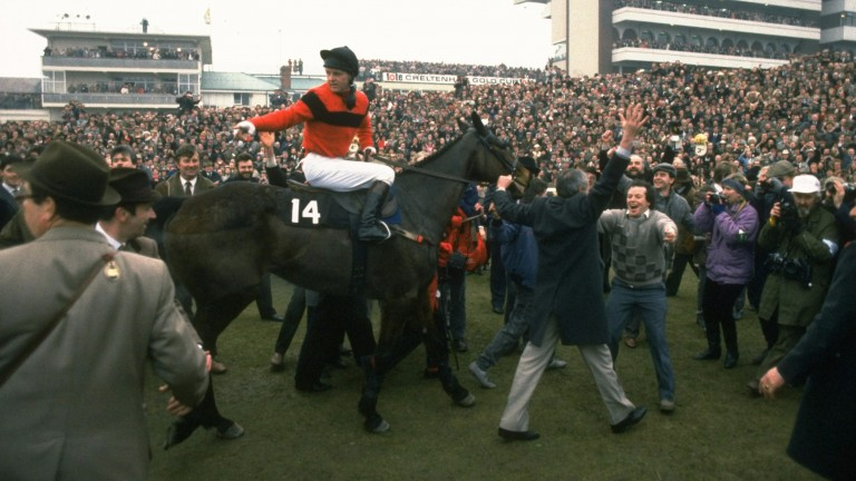 Dawn Run returns to the winner's enclosure following her Gold Cup victory