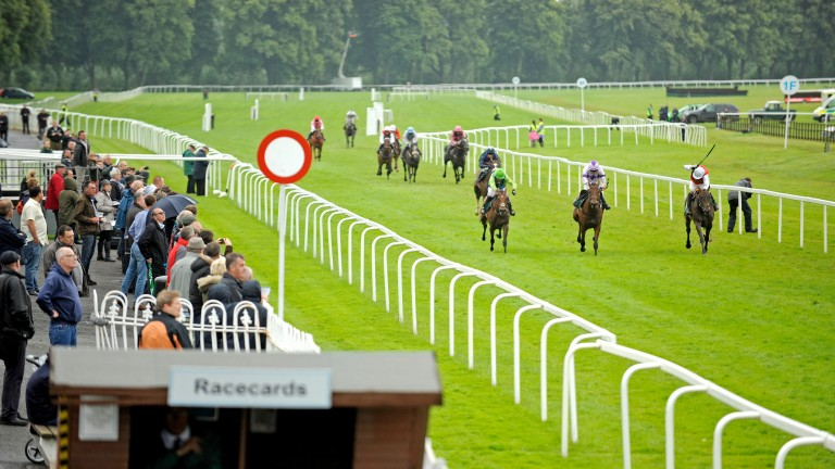 Worcester: seven races and 70 declarations for Monday
