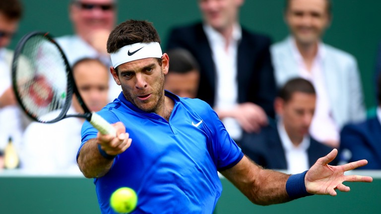 Juan Martin del Potro is enjoying his tennis again