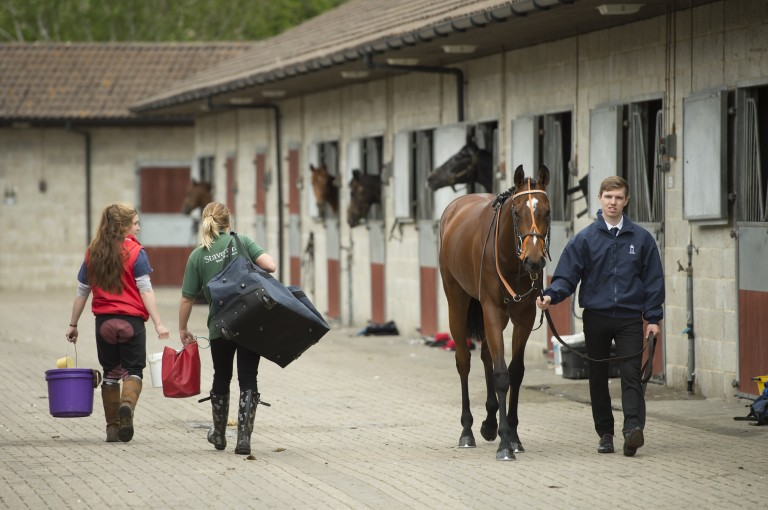 All people in racing are provided the opportunity to progress, says key industry group