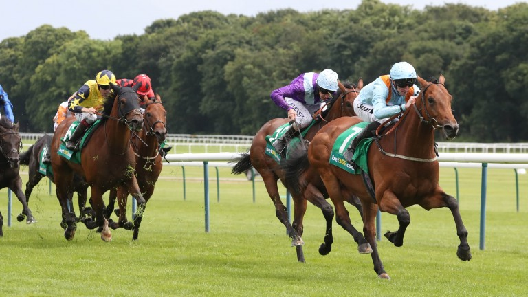 Tawdeea: bids to repeat last year's win in very different conditions