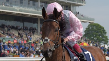 So Mi Dar: expected to improve on her reappearance effort