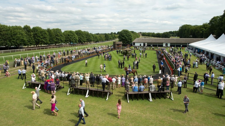 Racecourses hope to get an anti-drug message across