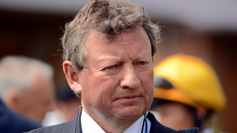 Mark Johnston: trainer is strongly represented in the Silver Bowl