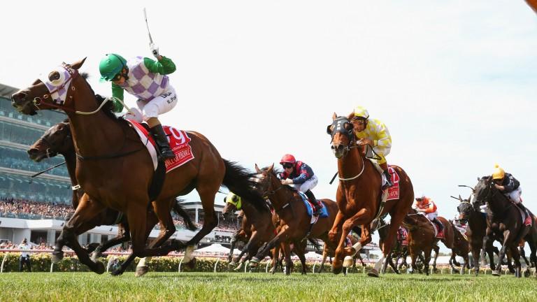 Prince Of Penzance: 2015 Melbourne Cup hero is a son of Pentire