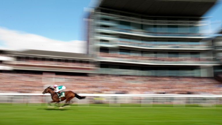 Frankel: landed the Juddmonte International