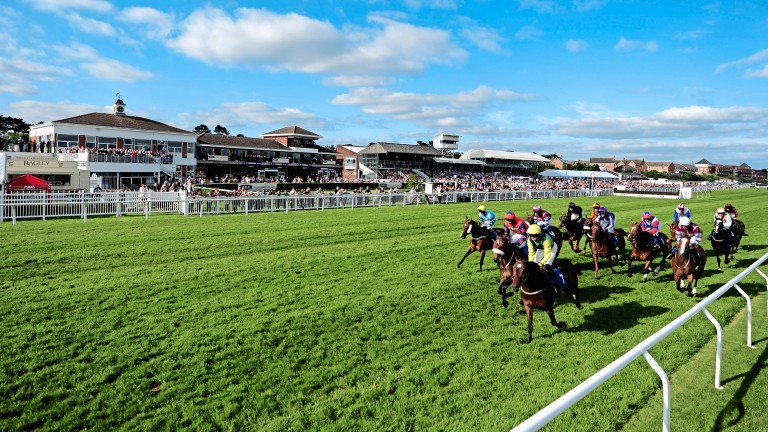 Stratford: hosting their feature hunter chase meeting on Friday