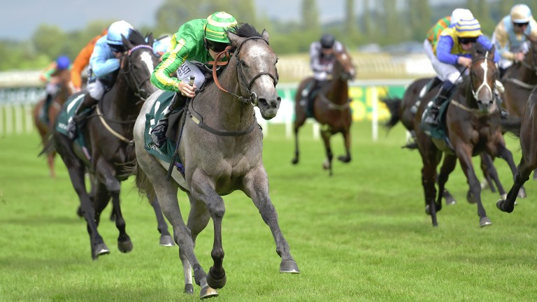 Mrs Danvers came to prominence with her win in the Weatherbys Super Sprint at Newbury in July 2016