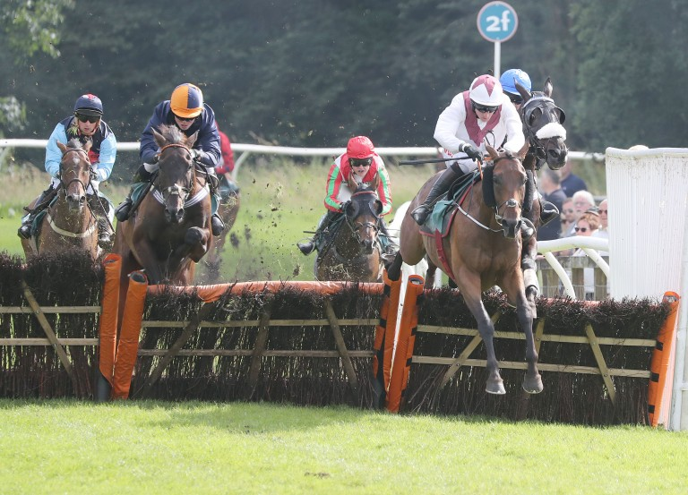 Eshtiaal (white) finished a fine second in the Grand National Hurdle for Gordon Elliott in 2015