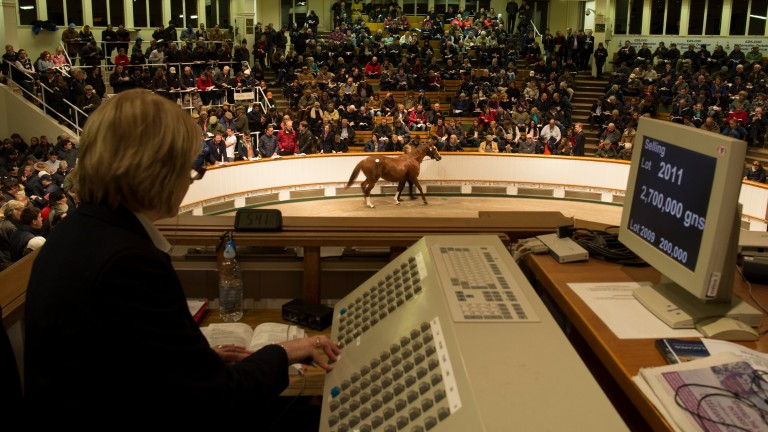 Tattersalls: hosting the Guineas sale on May 3-4