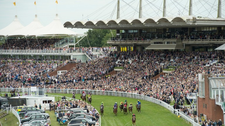 Goodwood: fighting mars the racecourse's opening meeting