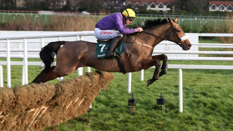 LEOPARDSTOWN SUN 27 DECEMBER 2015  PICTURE: CAROLINE NORRIS   SILVER CONCORDE RIDDEN BY DAVY RUSSELL
