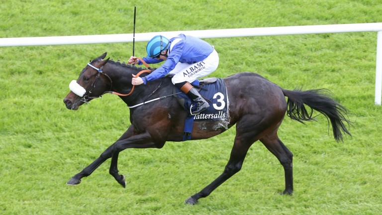 Awtaad: won the Madrid Handicap in 2016 before Classic glory