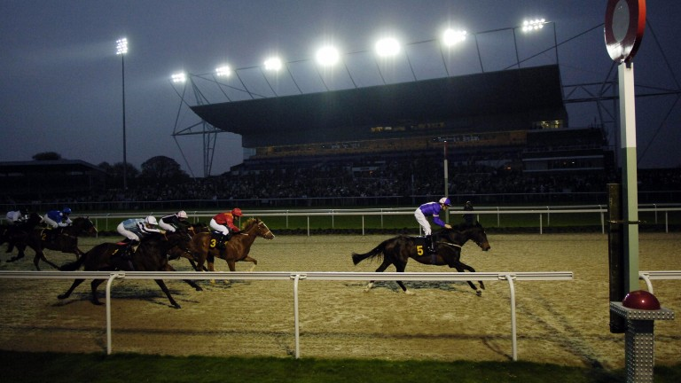Kempton has become something of a Bermuda Triangle for the weird and wacky in racing