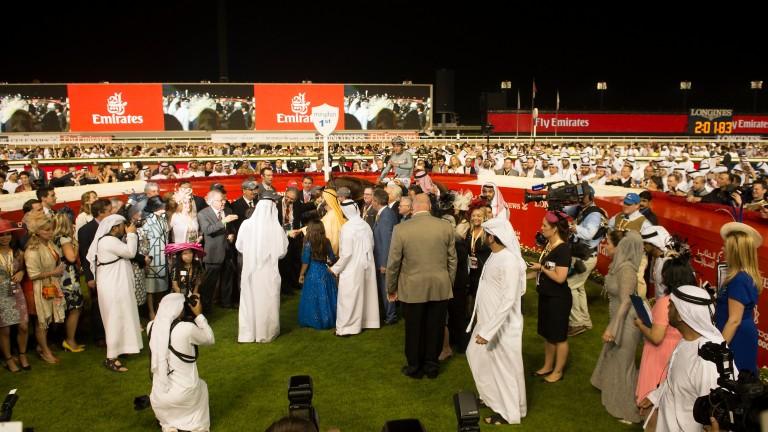 California Chrome wins this year's Dubai World Cup