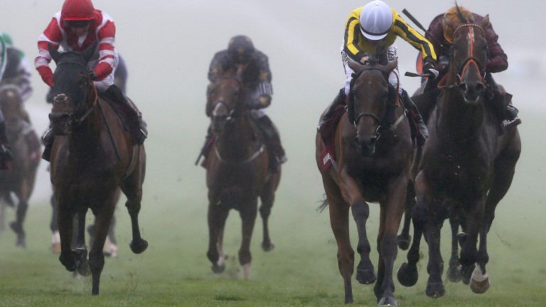Big Orange: all heart in winning the 2016 Goodwood Cup
