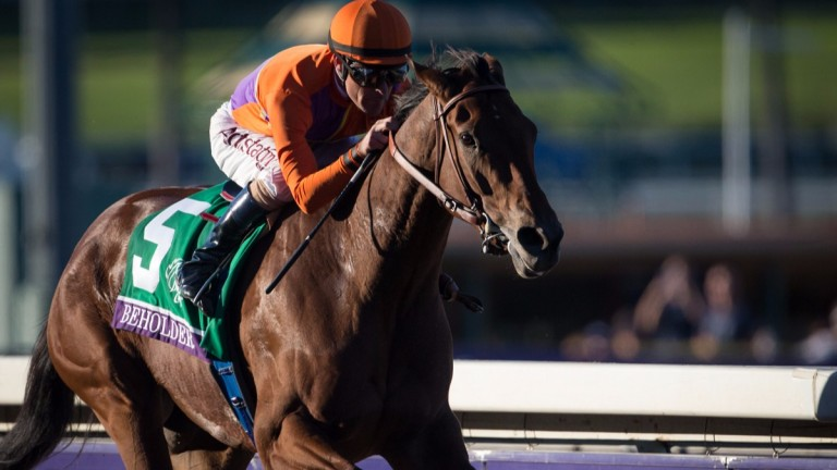 Beholder: remarkable racemare won three times at the Breeders' Cup including two victories in the Distaff