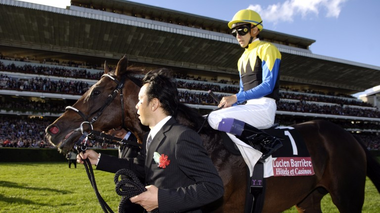 Deep Impact: Martinborough is a son of the Japanese supersire