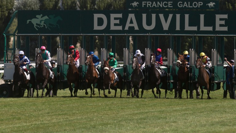 Deauville: hosts the Prix Maurice de Gheest on Sunday