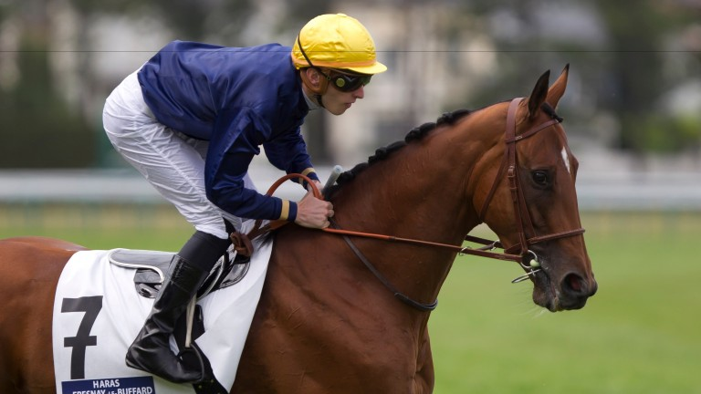 Esoterique: will be sent to Le Havre for her first covering