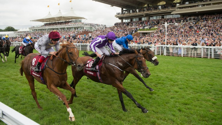 The Gurkha: top-class miler and Coolmore sire