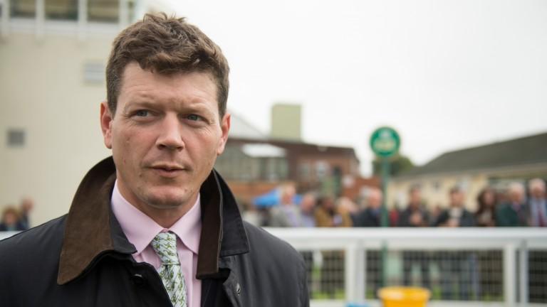 Andrew Balding: trainer of the unbeaten Contango