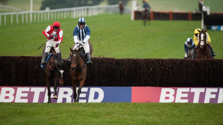 Monbeg Dude (left): Paul Walbyoff backed him for this year's Grand National