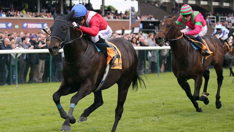 Kingsgate Native: winner of eight of his 60 starts - including two Group 1s